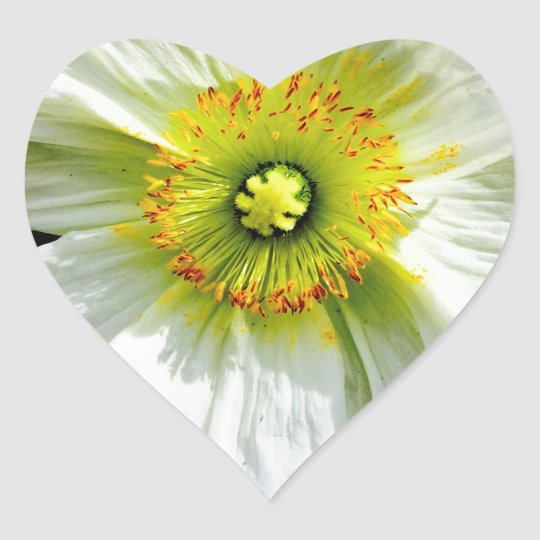 Poppy Heart Sticker