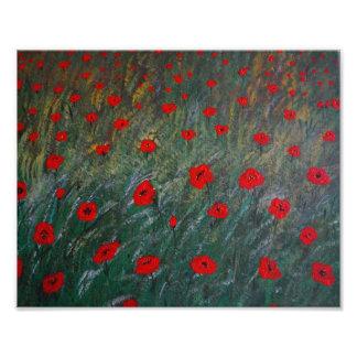 poppy meadow photo print