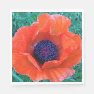 POPPY Oriental Red Orange --- Disposable Napkins