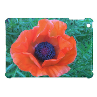 POPPY Oriental Red Orange --- iPad Mini Case