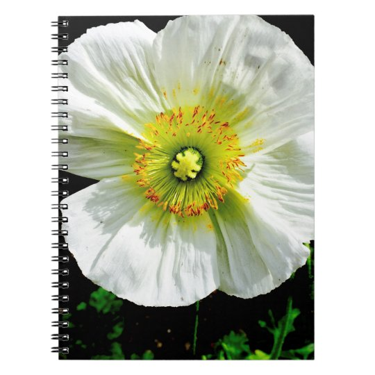 Poppy Spiral Note Book