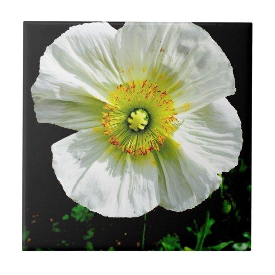 Poppy Tile