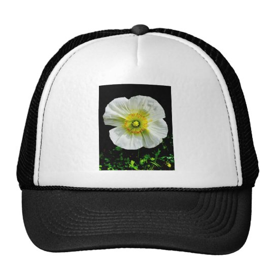 Poppy Trucker Hat