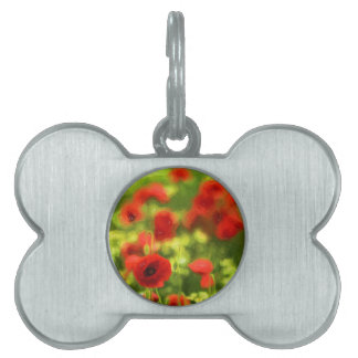 Poppy VI_ Pet ID Tag