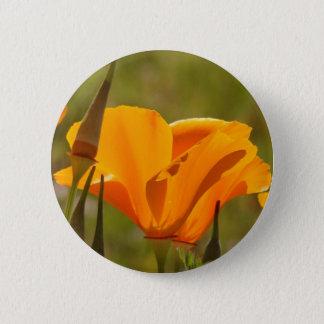 Poppy Wildflower Button