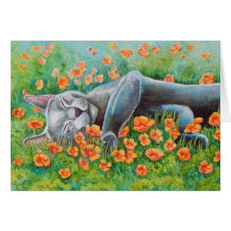 Poppy's Poppies Card