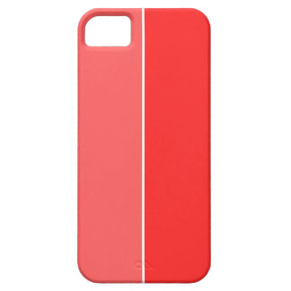Popsicle iPhone 5 Covers