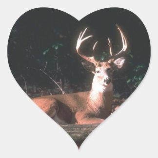 Popular Whitetailed Deer Buck Gift Heart Sticker
