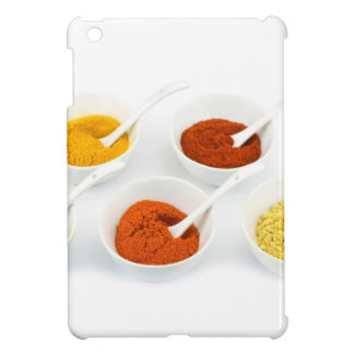 Porcelain bowls and spoons with various spices iPad mini case