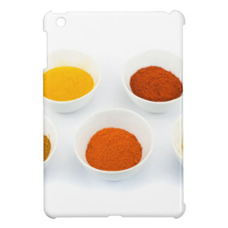 Porcelain bowls with several seasoning spices iPad mini case