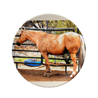 Porcelain Decorative Plate - Palomino Horse