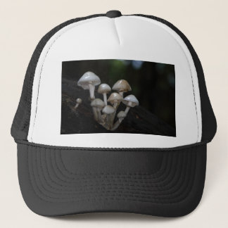 Porcelain fungus, Oudemansiella mucida Trucker Hat