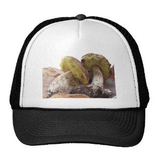 Porcini mushrooms isolated on white background trucker hat