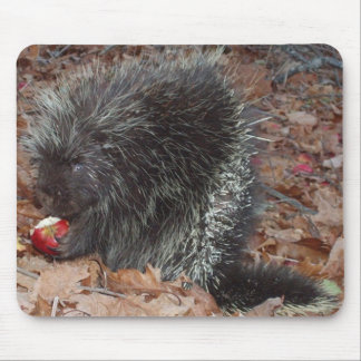 Porcupine and Apple Mouse Pad