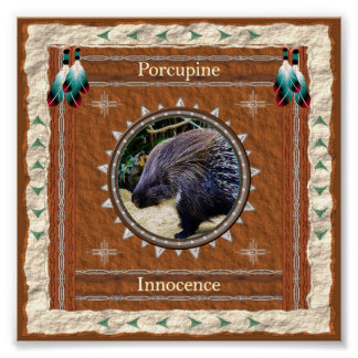 Porcupine  -Innocence- Poster Print