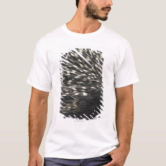 Porcupine quills T-Shirt