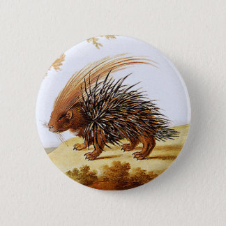 Porcupine - Vintage Porcupine Painting (detail) 2 Inch Round Button