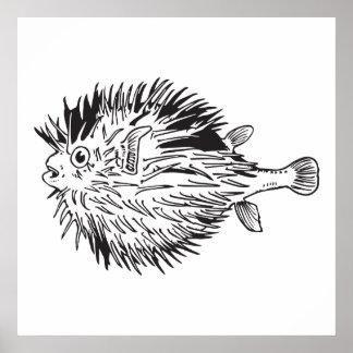 porcupinefish  aka blowfish poster