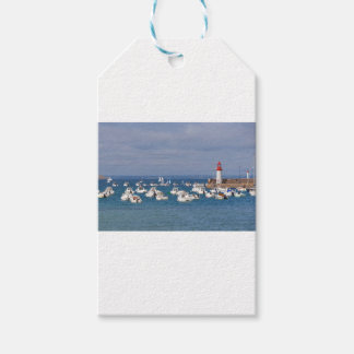 Port of Erquy in France Gift Tags