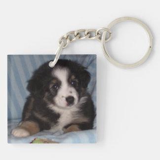 Porte - clé animal porte-clé carré en acrylique double face