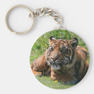 porte - clé de petit animal de tigre porte-clé rond