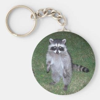Porte - clé de raton laveur porte-clé rond