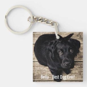 Russkiy Toy chien chiens chiens de race Patte Porte Clé Porte-Clés Lanyard