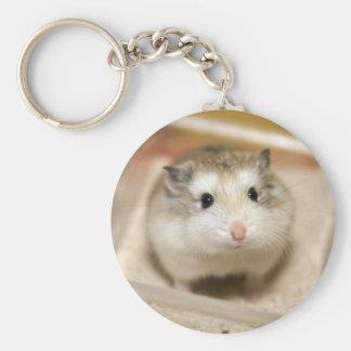 Porte-clés PMT le hamster de bébé : Regard fixe