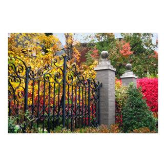 Porte colorée avec le feuille et les arbres à photographes