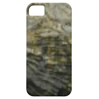 portion of the rock in stone iPhone 5 cover