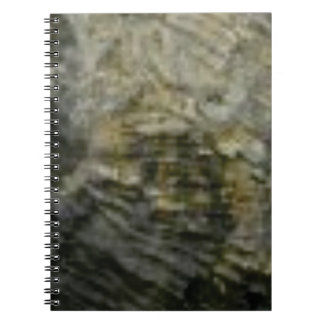 portion of the rock in stone notebook