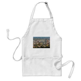 Portland Downtown Cityscape in Fall Season Standard Apron