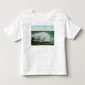 Portland, MainePeaks Island View of the Surf T Shirt