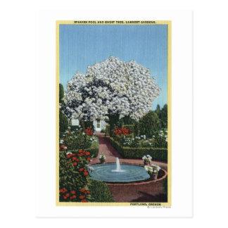 Portland, Oregon - Spanish Pool and Ghost Tree Postcard