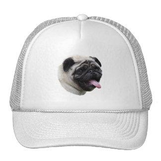 Portrait de photo d'animal familier de chien de casquette trucker