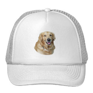 Portrait de photo de chien de golden retriever casquettes de camionneur