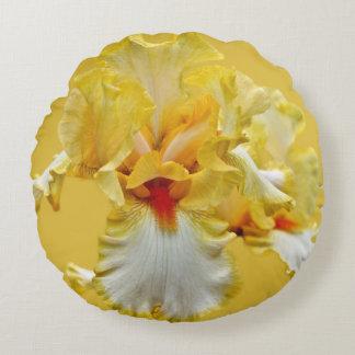 Portrait d'iris jaune coussins ronds