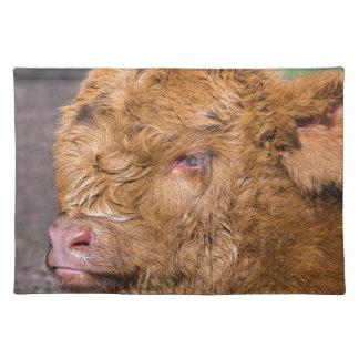 Portrait head newborn scottish highlander calf place mats