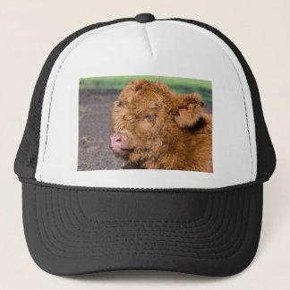 Portrait head newborn scottish highlander calf trucker hat