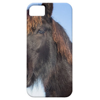 Portrait head of black Frisian horse Case For The iPhone 5