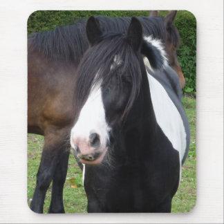 Portrait noir et blanc Mousepad de cheval Tapis De Souris