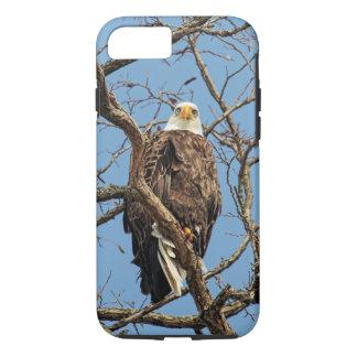 Portrait of a Bald Eagle iPhone 7 Case