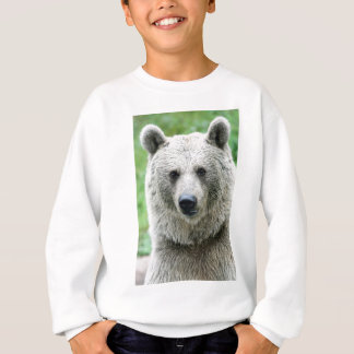Portrait of a bear sweatshirt