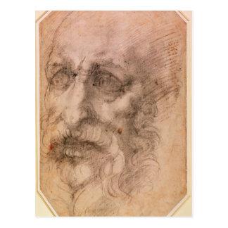 Portrait of a Bearded Man Postcard