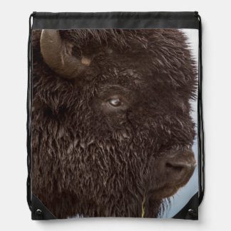 Portrait Of A Bison Bull In The Rain 2 Drawstring Backpack