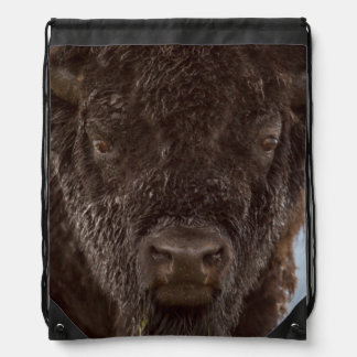Portrait Of A Bison Bull In The Rain Cinch Bags
