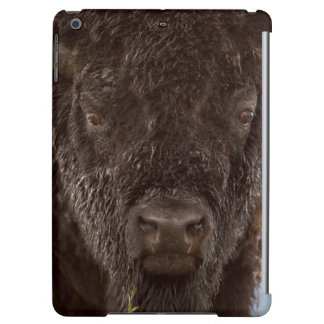 Portrait Of A Bison Bull In The Rain iPad Air Covers