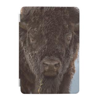 Portrait Of A Bison Bull In The Rain iPad Mini Cover