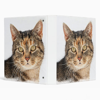 Portrait of a cat 3 ring binder