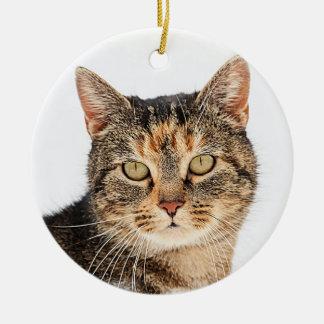 Portrait of a cat round ceramic ornament
